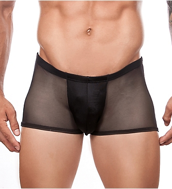 Cover Male Seductive Sheer Back Trunk