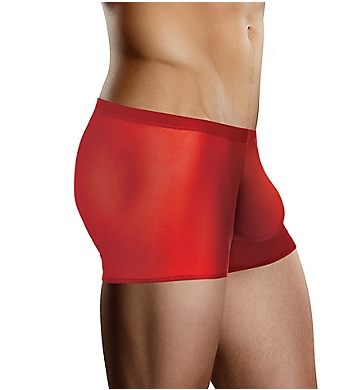 Male Power Sheer Stretch Mesh Pouch Trunk