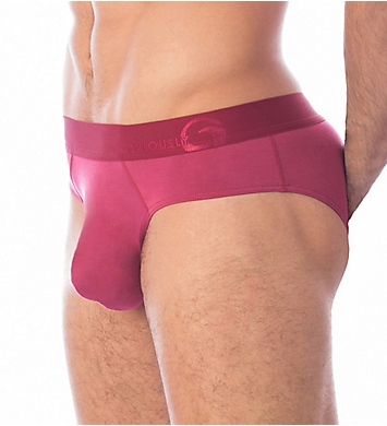 Obviously Downtown AnatoMAX Brief