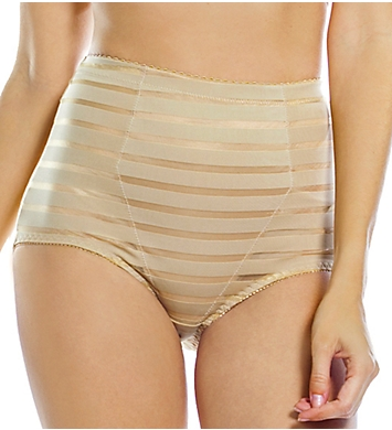 Rhonda Shear Mesh Insert Brief Panty