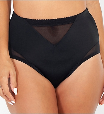 Rhonda Shear Mesh Insert Brief Panty